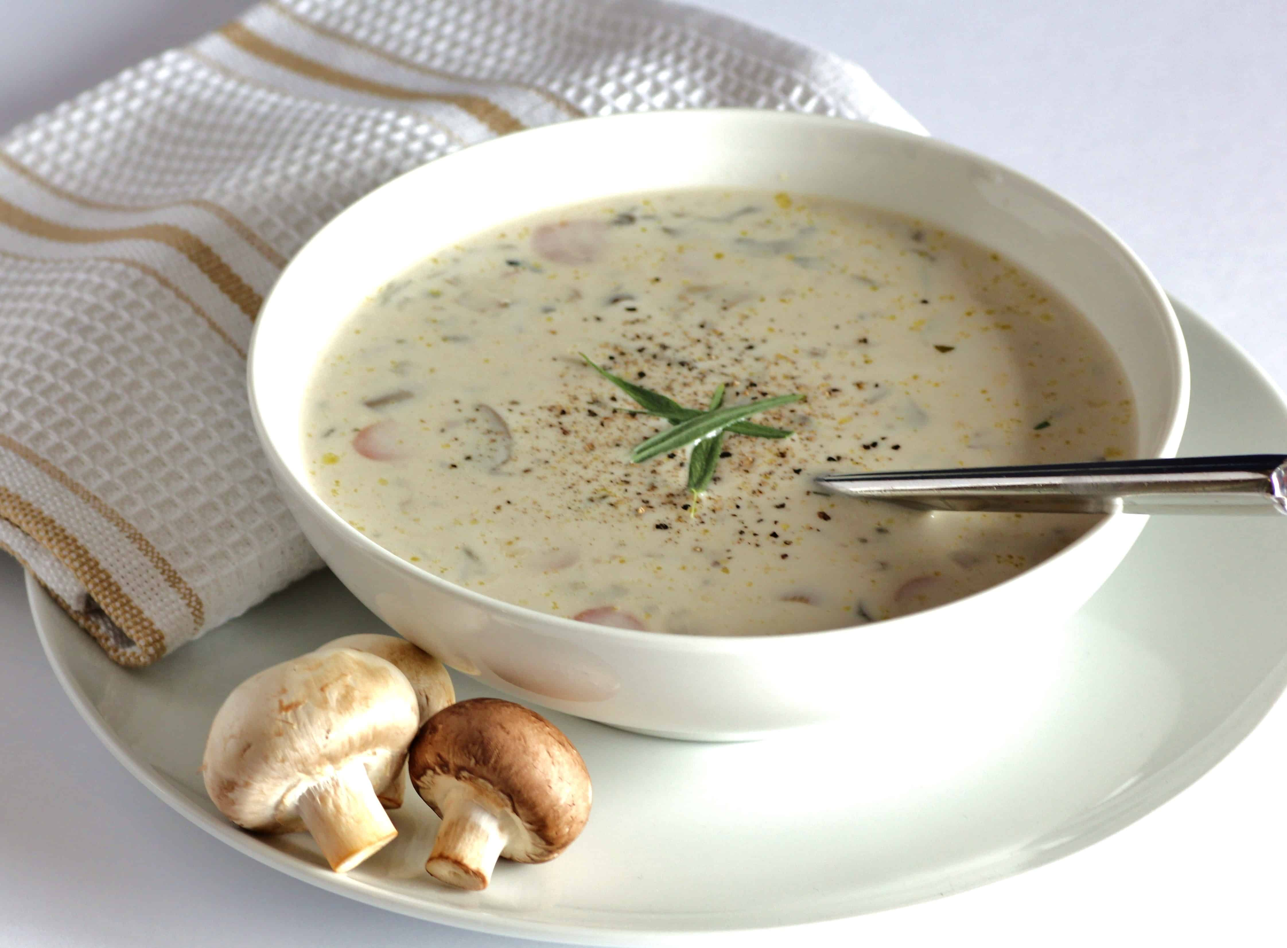 Wild About Mushroom Soup