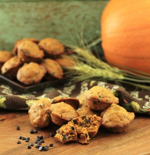 Mini Pumpkin Chocolate Chip Muffins (Small)