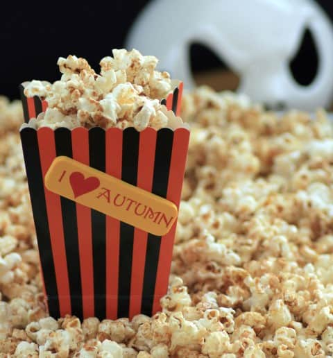 Pumpkin Spice Kettle Corn (Small)