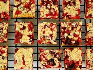 cranberry-crumb-bars-1 (2)