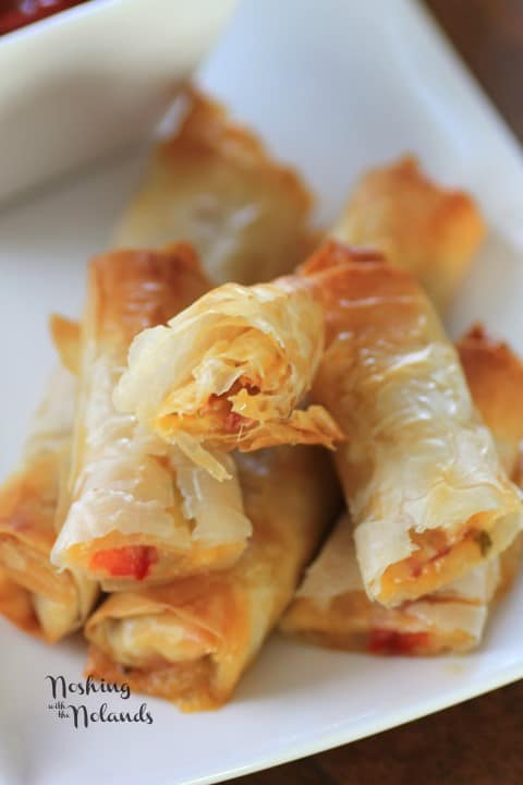Close up of Italian Spring Rolls stacked on a white plate