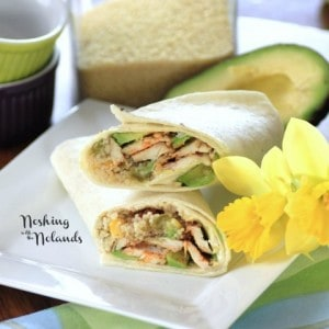 Chicken Couscous Wraps (3) (Small)