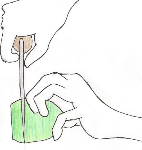 Knife Drawing by Amber Noland of Noshing With the Nolands