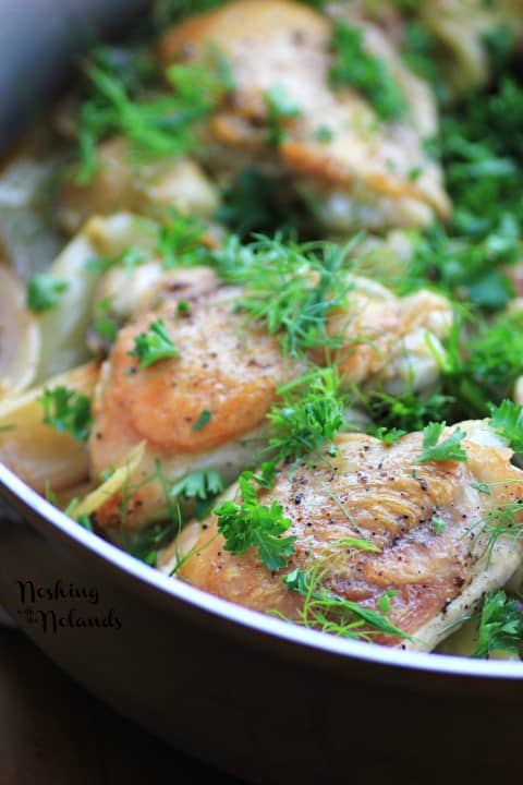 Chicken, Fennel and Artichoke with Calphalon by Noshing With The Nolands