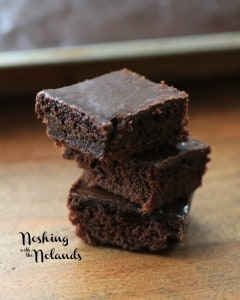 Easy Fudgy Snack Cake by Noshing With The Nolands (Small)