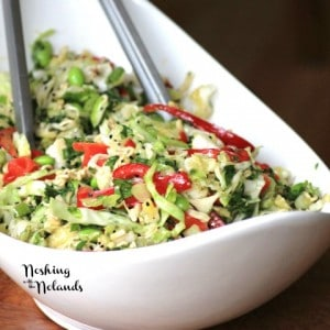 Japanese Noodle Salad by Noshing With The Nolands (2) (Small)