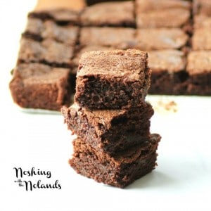 Scratch Brownies by Noshing With The Nolands (2) (Small)