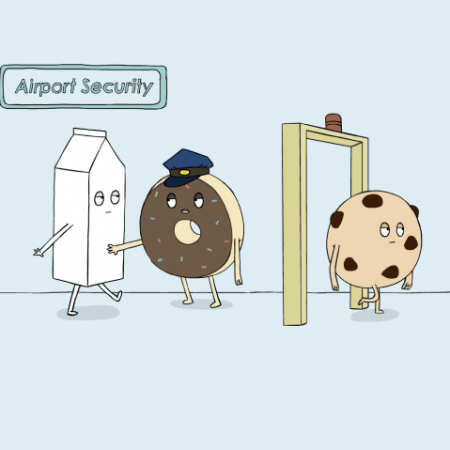 Airport Security (2) (Small)