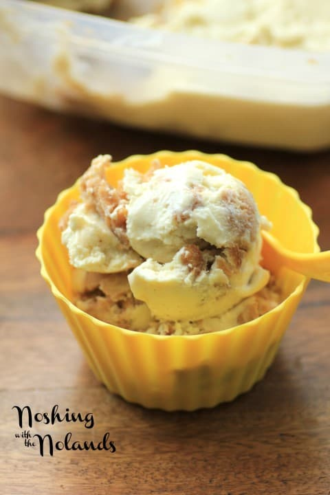 Apple Cinnamon Ice Cream by Noshing With The Nolands