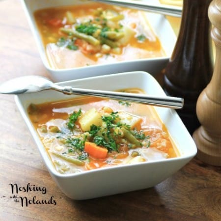 Garden Harvest Soup by Noshing With The Nolands (Small)