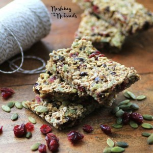 Playground Granola Bars by Noshing With The Nolands (2) (Small)