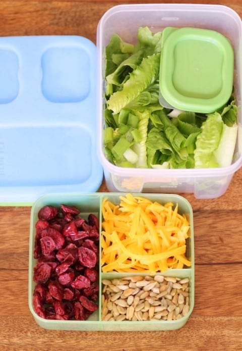 Salad Kit for Back to School by Noshing With The Nolands