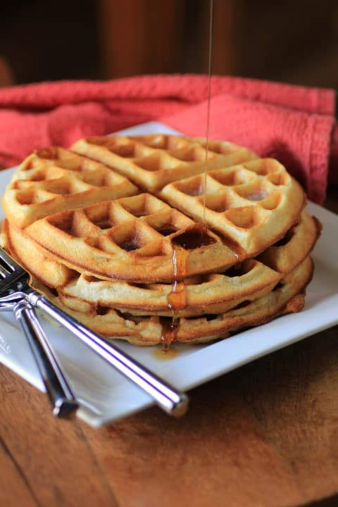 The Best Waffles by Noshing With The Nolands