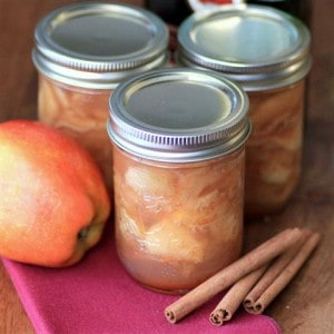 Brandied Cinnamon Apple Preserves by Noshing With The Nolands (Small)