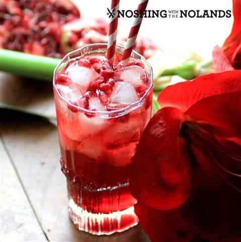 Southern Pomegranate Sparkler by Noshing With The Nolands