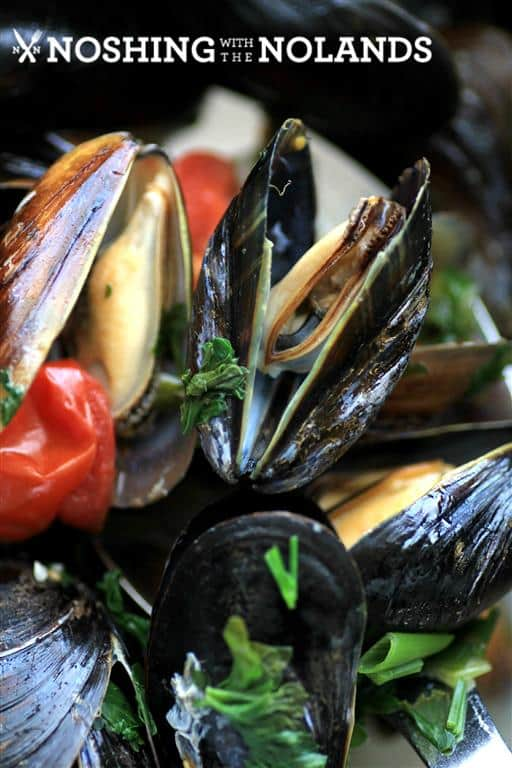 White Wine Garlic Mussels by Noshing With The Nolands