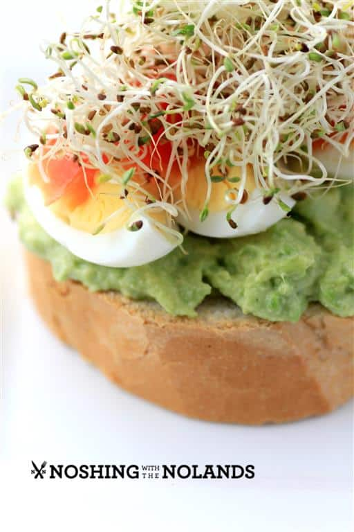 Open Faced Egg Avocado Smoked Salmon Sandwich by Noshing With The ...