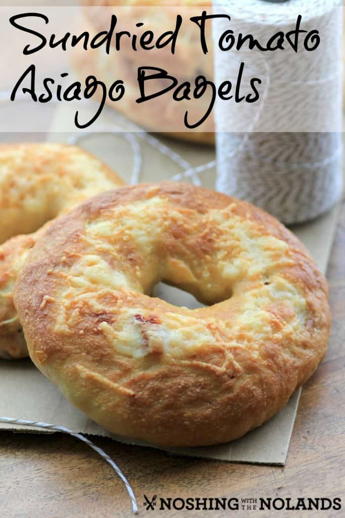 Sundried Tomato Asiago Bagels by Noshing With The  Nolands
