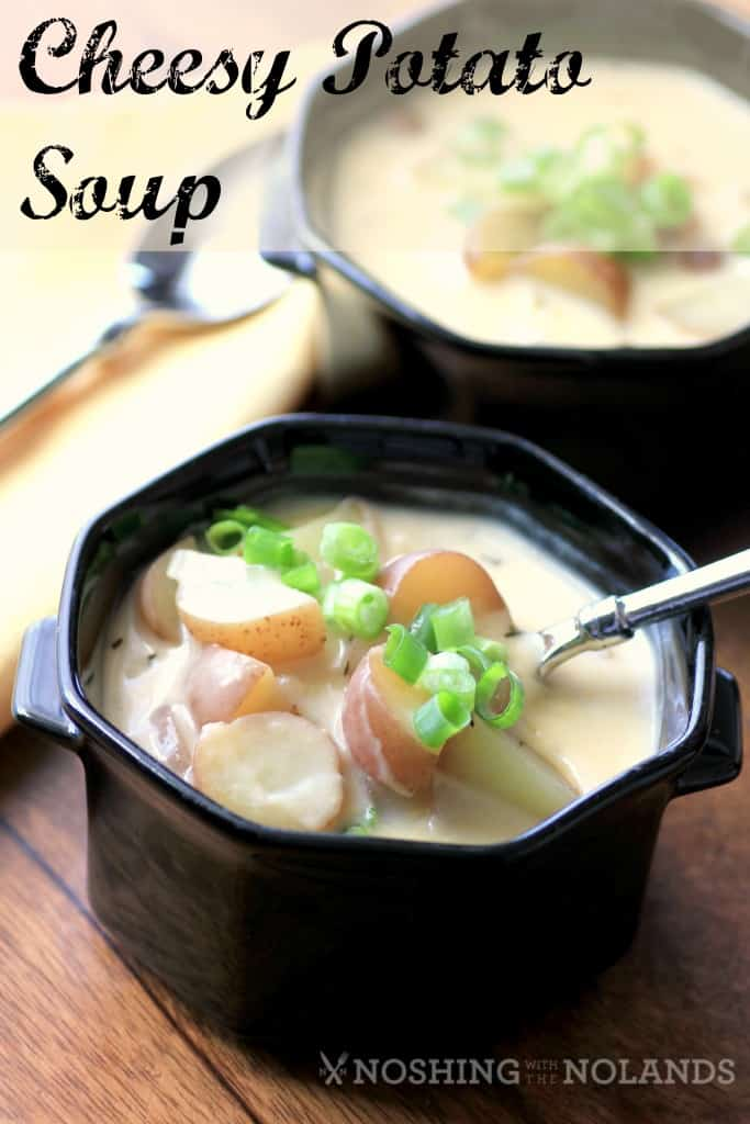 Cheesy Potato Soup by Noshing With The Nolands