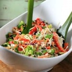 Asian Noodle Summertime Salad by Noshing With The Nolands 480x480
