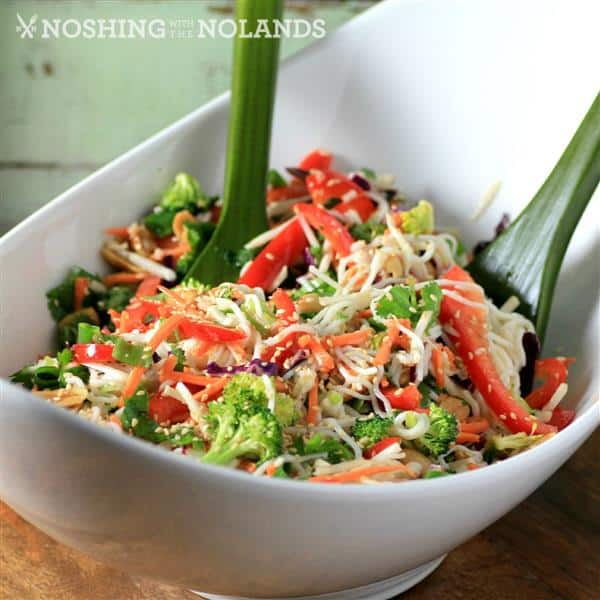 Asian Noodle Summertime Salad by Noshing With The Nolands (square) (Custom)