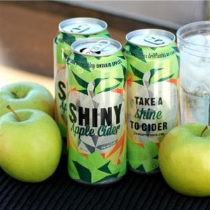 Shiny Apple Cider Square by Noshing With The Nolands (Small)