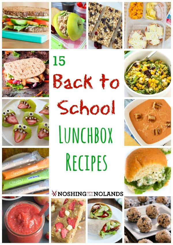 15 Back to School Lunchbox Recipes by Noshing With The Nolands