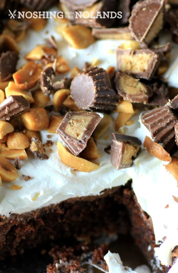 Best Reese's Peanut Butter Chocolate Cake by Noshing With The Nolands (3) (Custom)