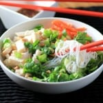 Big Cool Chicken Noodle Bowl by Noshing With The Nolands 480x480