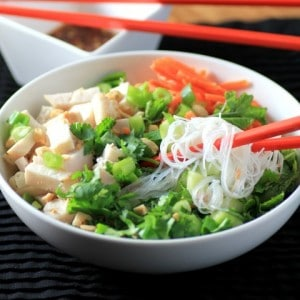 Big Cool Chicken Noodle Bowl