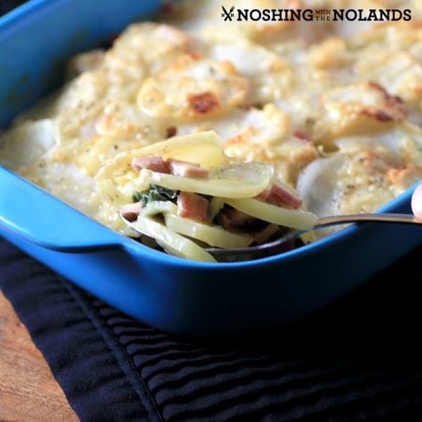 Canadian Bacon, Swiss Chard, Potato Gratin by Noshing With The Nolands square (Custom)