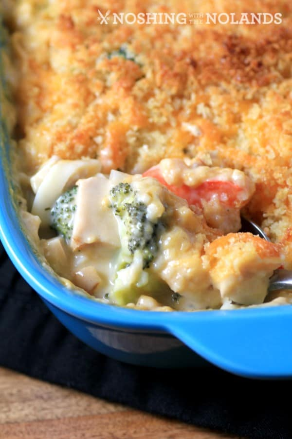 Cheesy Chicken Broccoli Noodle Casserole by Noshing With The Nolands
