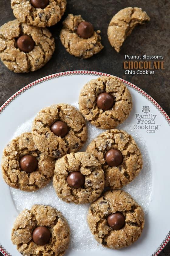 26 Freezable Christmas Cookie Recipes Make Ahead Christmas Cookies