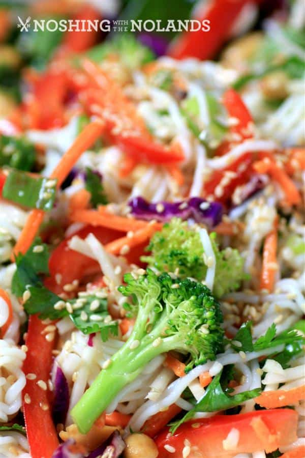 Asian Noodle Summertime Salad by Noshing With The Nolands (3) (Custom)