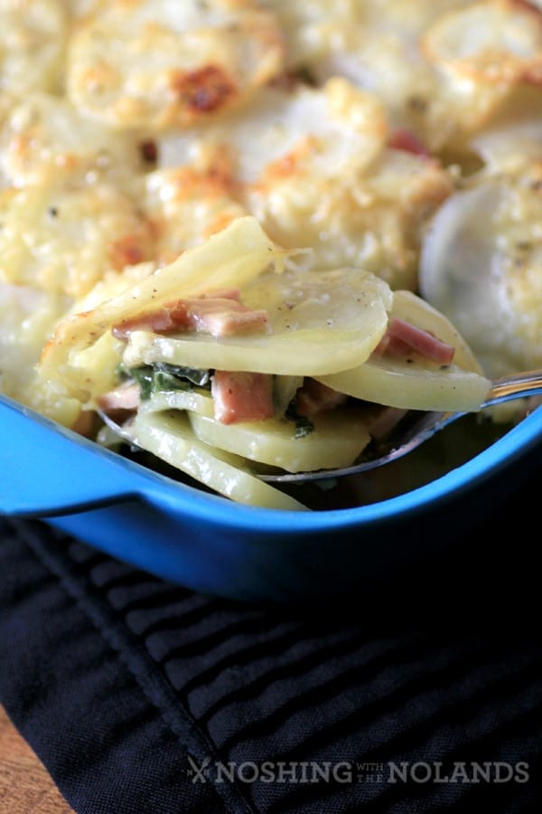 Canadian Bacon, Swiss Chard, Potato Gratin by Noshing With The Nolands