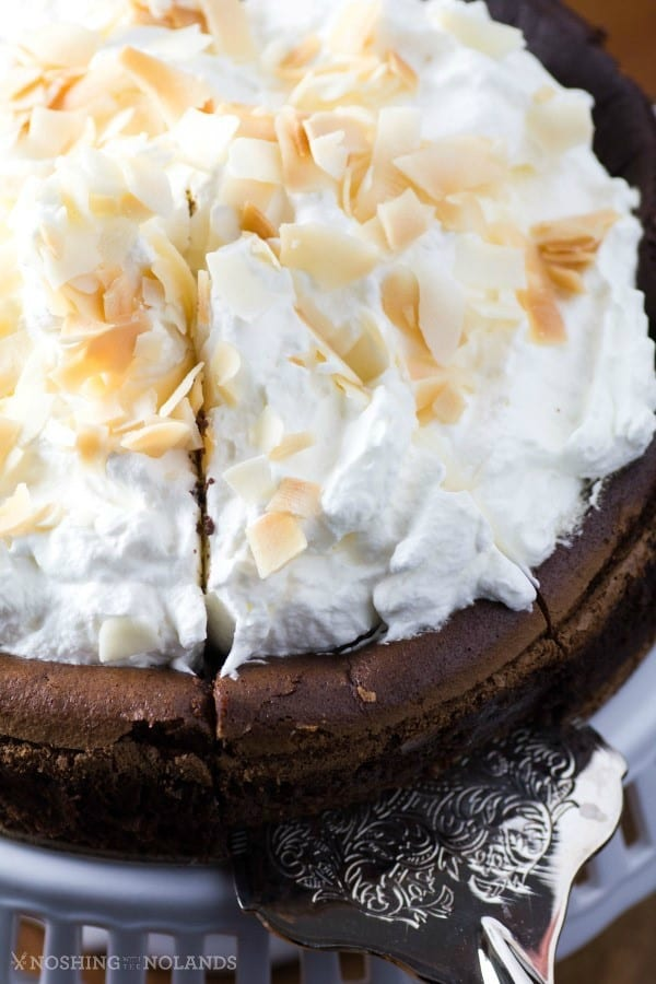 Chocolate Cake with Hippie Flakes by Noshing With The Nolands is a gluten free divinely rich cake perfect for any special occasion.