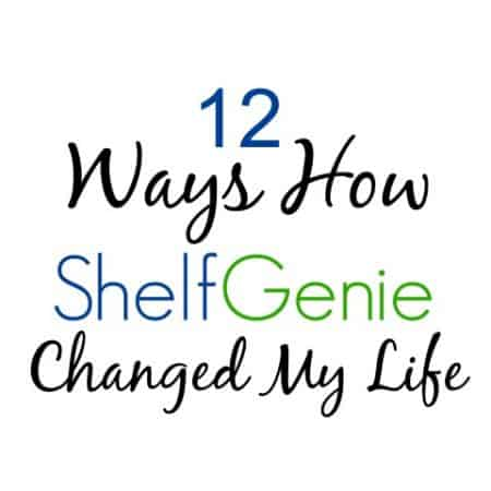 12 Ways How Shelf Genie Changed My Life (Small)