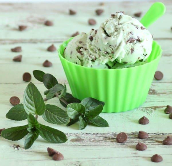 mint chocolate chip ice cream (Custom)