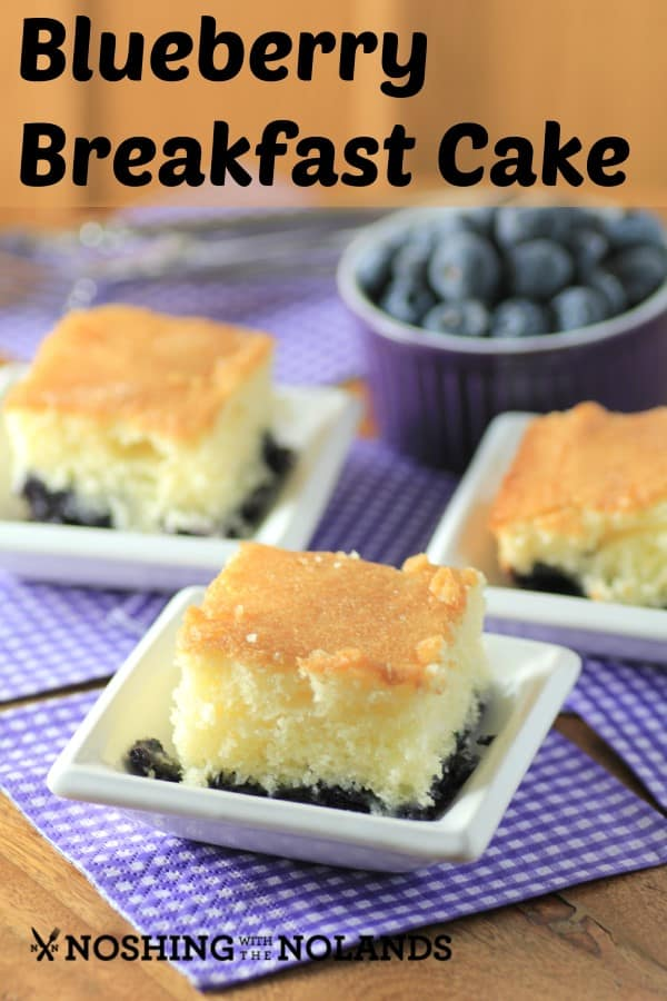 MWM Blueberry Breakfast Cake by Noshing With The Nolands