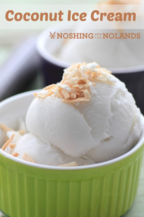 Coconut Ice Cream by Noshing With The Nolands
