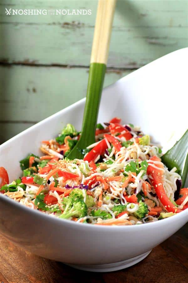 Asian-Noodle-Summertime-Salad-by-Noshing-With-The-Nolands