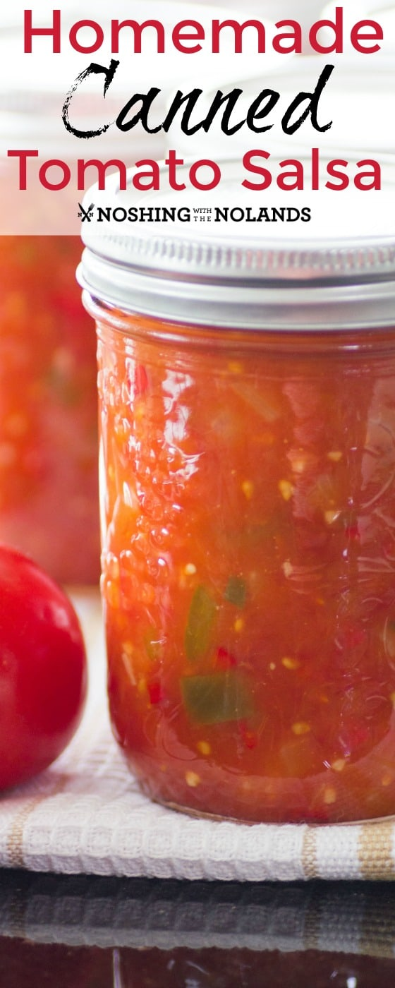 Homemade Canned Tomato Salsa