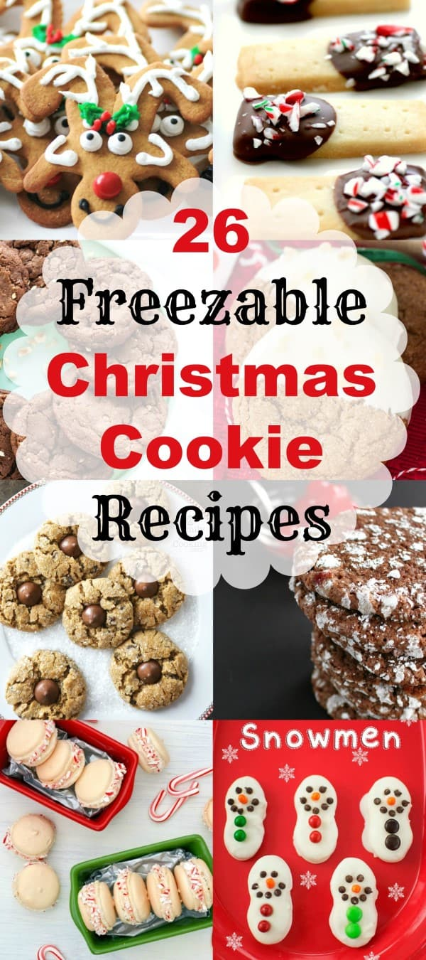 Mwm 26 freezable christmas cookie recipes for Easy holiday baking recipes for gifts