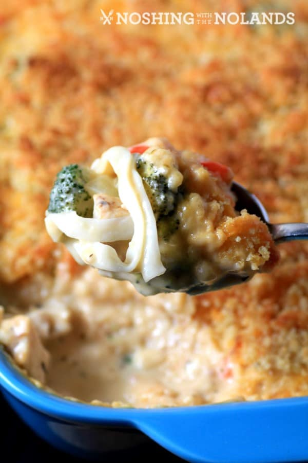 chicken-broccoli-noodle-casserole-by-noshing-with-the-nolands-4-custom