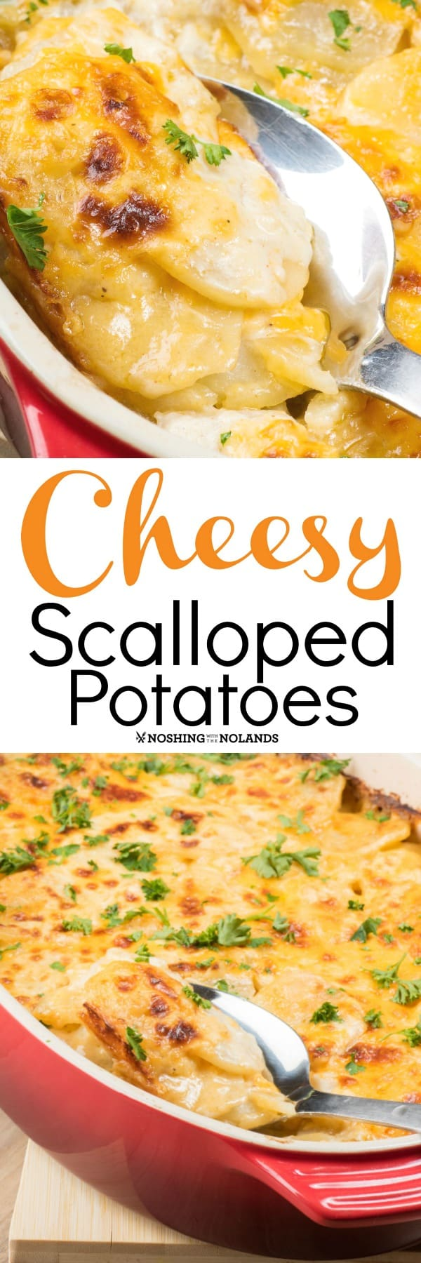 Cheesy Scalloped Potatoes make the bes comforting side dish for anytime of the year!! #scallopedpotatoes #sidedish #potatoes #cheesy