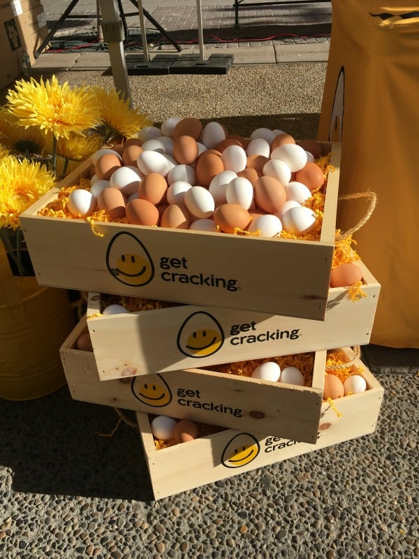 Pop-Up Egg Farmers' Market
