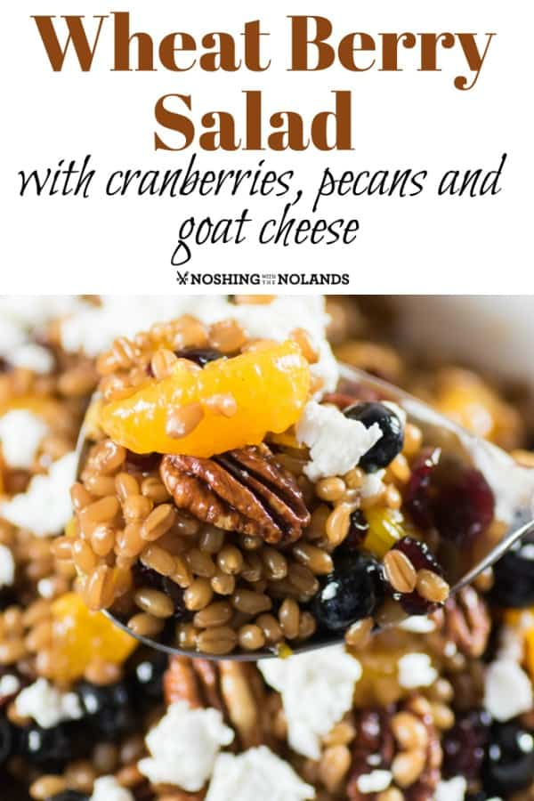 Wheat Berry Salad with Cranberries, Pecans and Goat Cheese