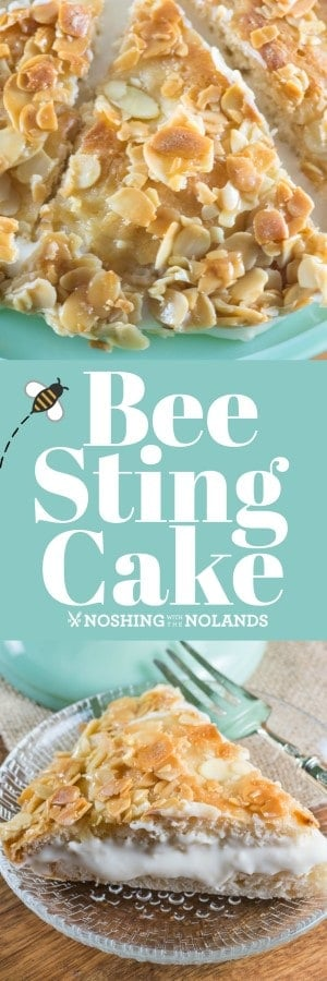 Bee Sting Cake is a fun cake to make that is a German tradition, perfect for spring and summer! #beestingcake #dessert #spring #summer #Easter