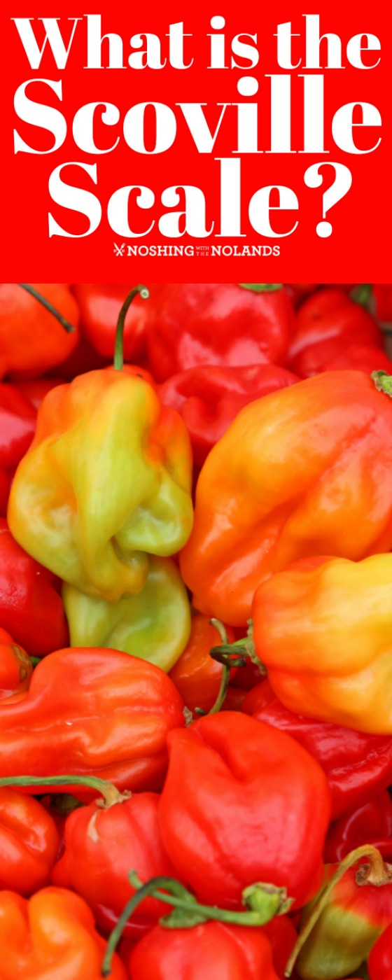 What is the Scoville Scale? Learn all about the ranking of peppers and their heat content. #scovillescale #peppers #hotpeppers