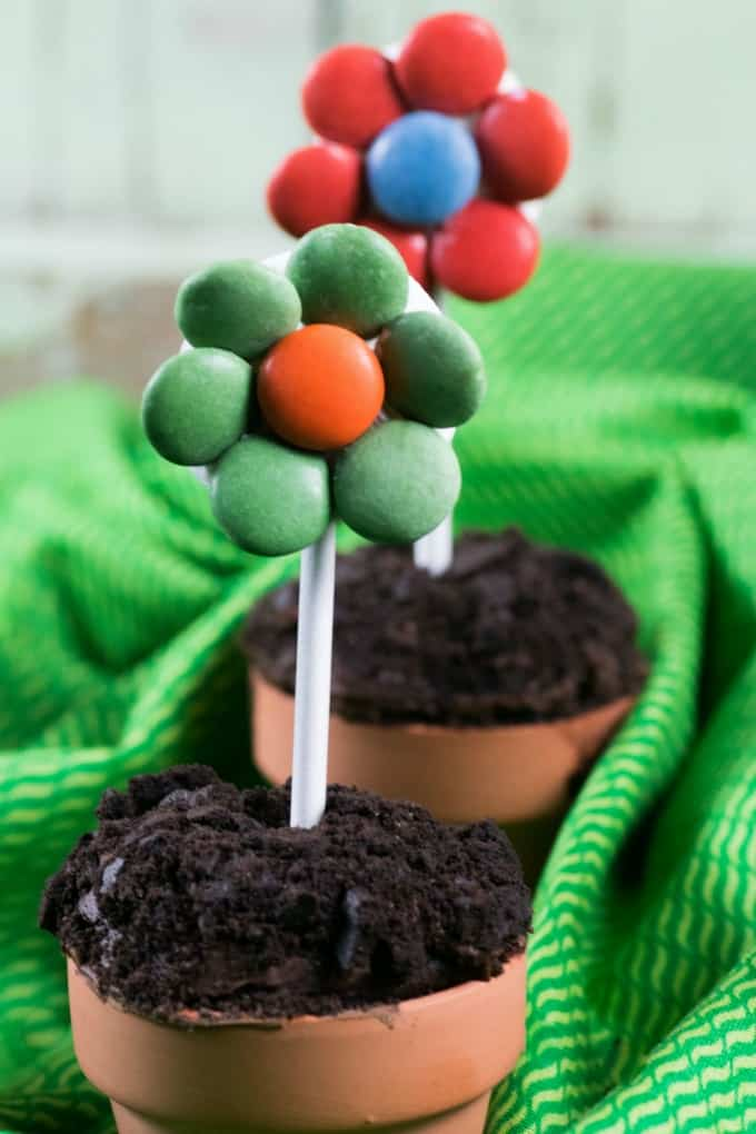 Close up of Flower Pot Cupcakes